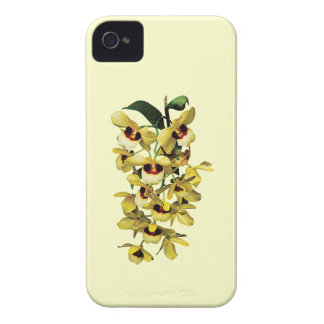 Cascade of Yellow Orchids Case-Mate iPhone 4 Cases