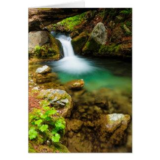 Cascade on Hare Creek, California Card