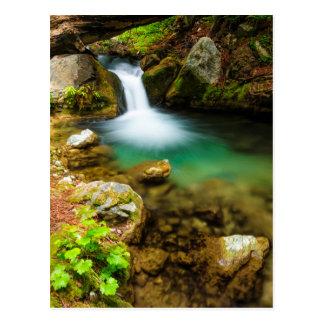 Cascade on Hare Creek, California Postcard