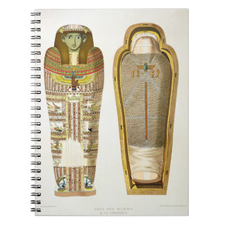 Case and mummy in its cerements from Gizeh, Volume Notebook