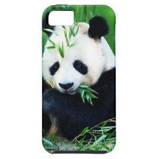 "CASE iPhone 5 ""PANDA "" iPhone 5 Case"