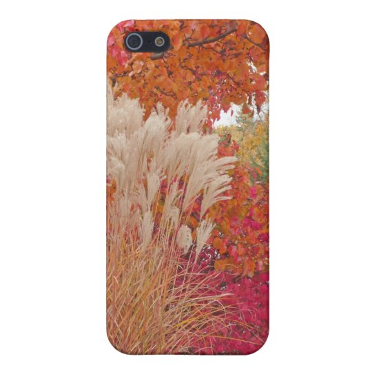 Case Savvy Matte Finish iPhone 5/5S Case/PAMPAS GR Case For The iPhone 5