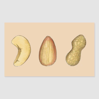Cashew, Almond, Peanut Nuts Stickers