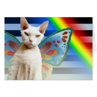 Casper Rainbow fairy | Devon Rex Cat Birthday Card