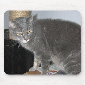 Casper the Cat Mousepad