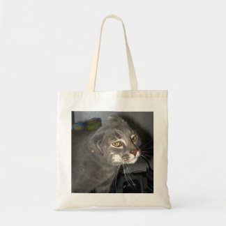 Casper the Cat's Funny Ears Bag