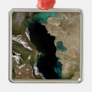 Caspian Sea Silver-Colored Square Decoration