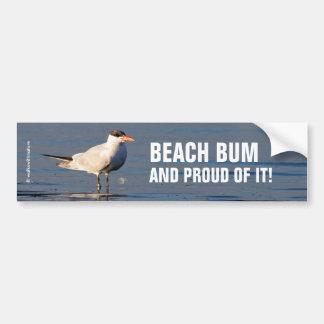 Caspian Tern at the Beach Bumper Sticker