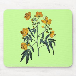 Cassia Corymbosa Mouse Pad