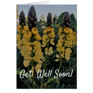 CASSIA GET WELL CARD - JOURNEY FOR A CURE