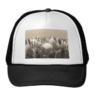 Cast Iron Fractal Hat