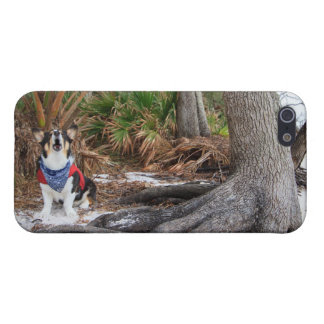 Castaway Cover For iPhone 5/5S