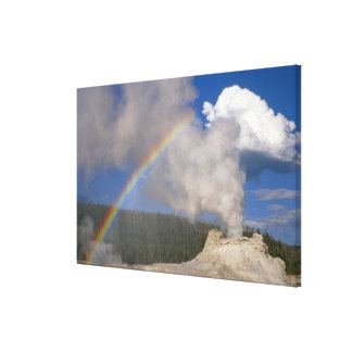 Castle Geyser with Rainbow, Yellowstone National P Stretched Canvas Prints