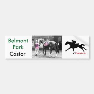 Castor by Malibu Moon Bumper Sticker