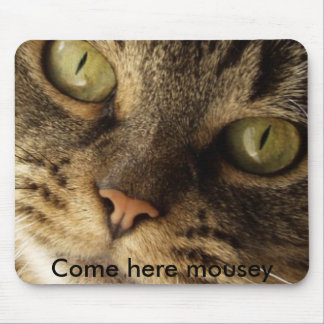 cat%20close%20up[1], Come here mousey Mouse Pad
