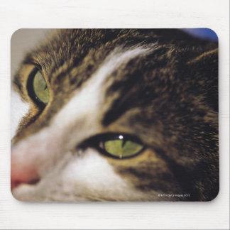 cat 2 mouse mat