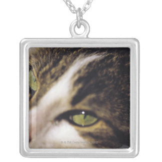 cat 2 silver plated necklace