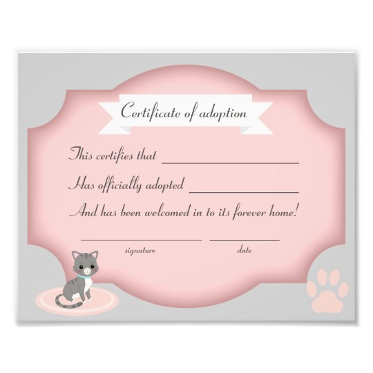 cat adoption party certification paper photo