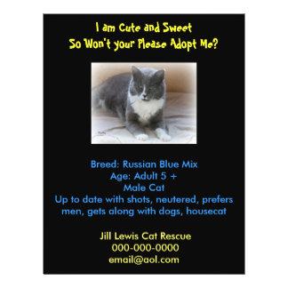 Cat Adoption Template Flyer
