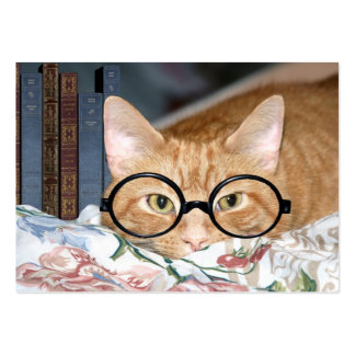 Cat and books ACEO Business Card Template