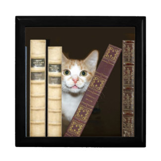 Cat and books gift box