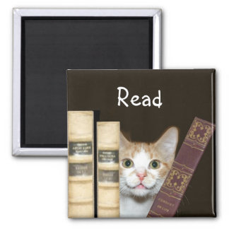 Cat and books magnet