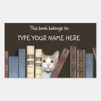 Cat and books sticker