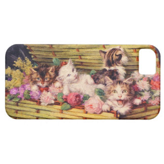 Cat and bouquet iPhone 5 cases