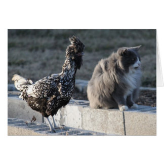 Cat and Chicken Greeting Card