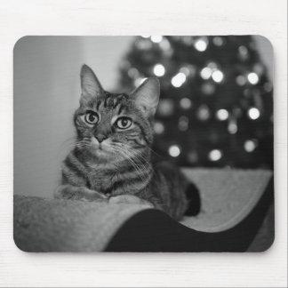Cat and Christmas Tree Fine Art Photograph Unique Mouse Pad
