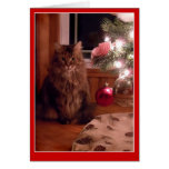 Cat and Christmas tree ornaments greeting card