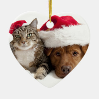 Cat and Dog Wish A Merry Christmas Christmas Ornament
