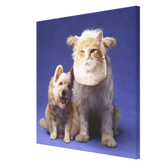 Cat and dog with masks canvas print