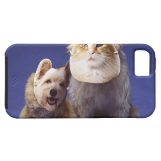 Cat and dog with masks case for the iPhone 5
