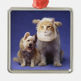 Cat and dog with masks christmas ornament