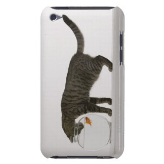 Cat and goldfish iPod touch case