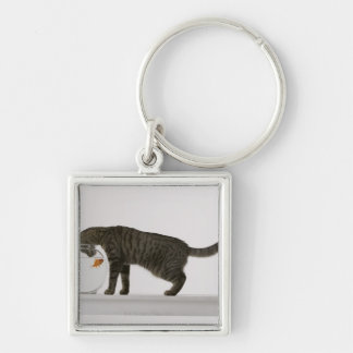 Cat and goldfish key ring