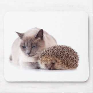 cat and hedgehog mouse mat