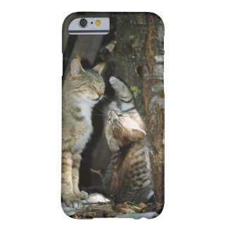 Cat and Kitten by Tree Barely There iPhone 6 Case