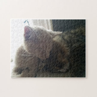 Cat and Kitten Jigsaw Puzzle