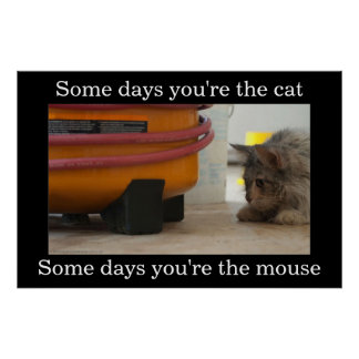 Cat and Mouse Demotivational Poster