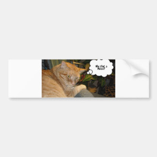 Cat and Mouse Humor Bumper Sticker
