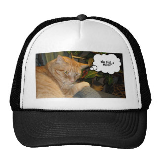 Cat and Mouse Humor Cap