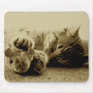 Cat and Mouse Mouse Mat