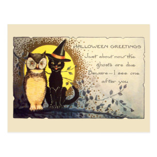Cat and Owl in Vintage Halloween Postcard