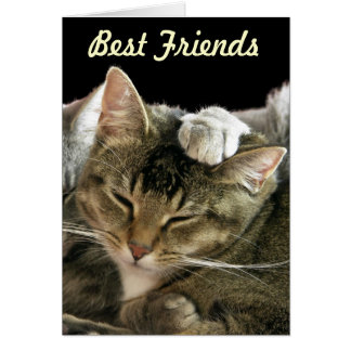 Cat And Paw Greeting Card