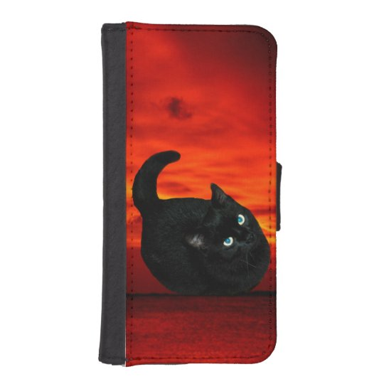 Cat and Red Sky