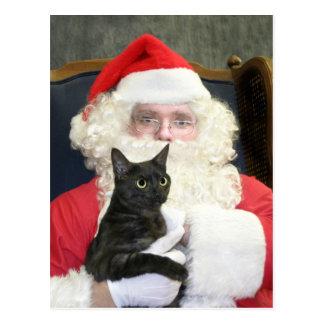 Cat and Santa Claus Postcard