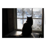 Cat and Silence Greeting Card