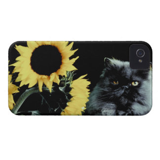 Cat and Sunflower Case-Mate iPhone 4 Cases